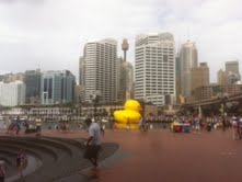 Sydney-Festival-Duck