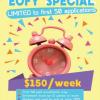 先着50名限定!週$150 General English/ IELTS/EAPコース